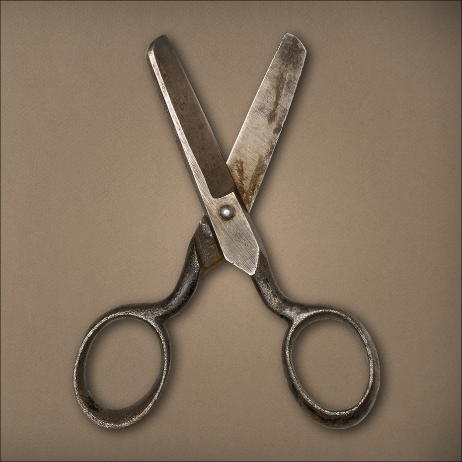 Single Metal Scissors
